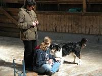 Clickerseminar mit Birgit Laser 23.-24.04.2005 Meschede