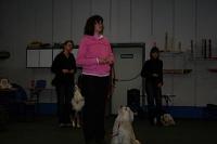 Choreotraining 01.-02.03.2008