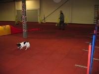 Clubtreffen 20.10.2008
