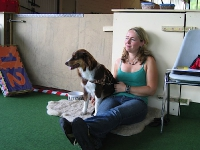 2008 CBF-Dogs