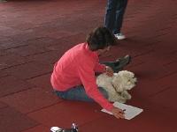 4 Tage Denise Nardelli 2009