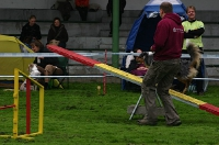 Event for Happy Dogs 19.09.2010 Dortmund